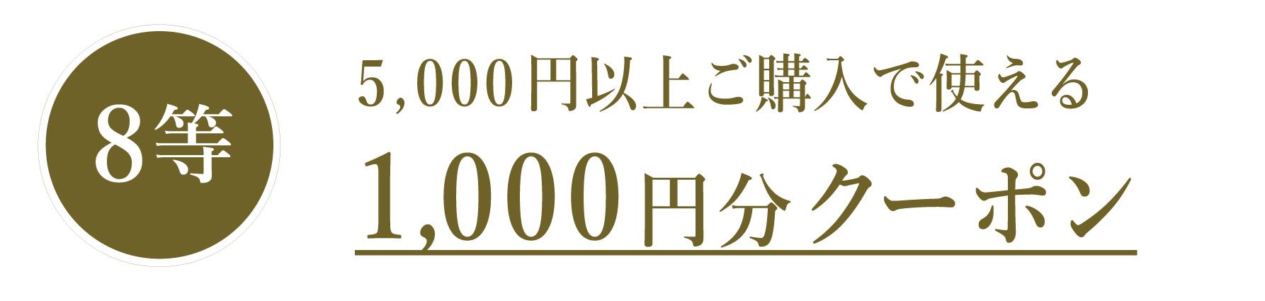 5,000円以上で使える1,000円分クーポン!
